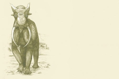 speculative-elephant.jpg?w=500&h=333