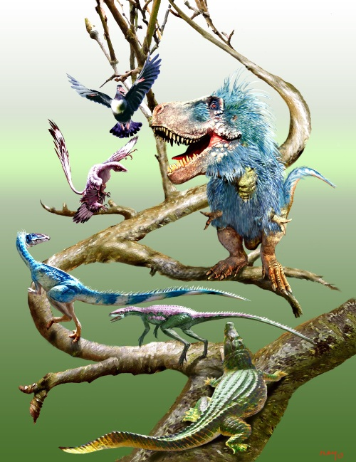 Dinosaur posture and body shape evolving up the evolutionary tree, with example taxa depicted.