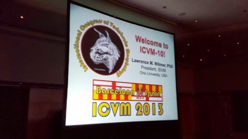 ICVM intro