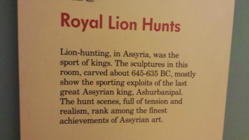 Royal Lion Hunt