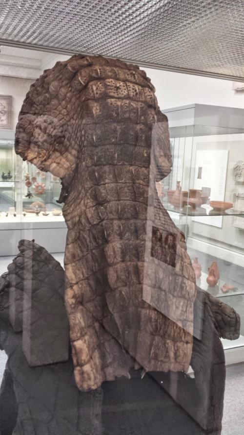 croc armour 1