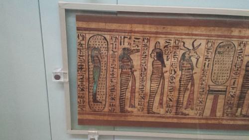 egypt croc 1