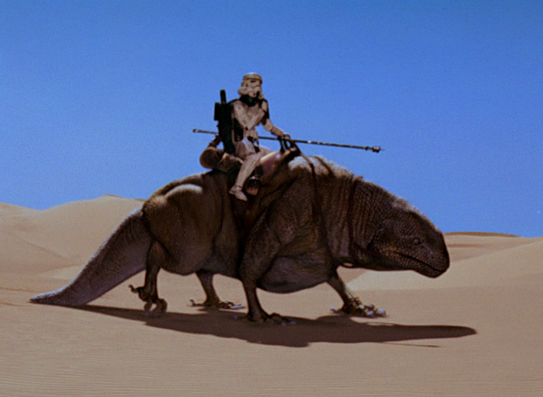 Functional Anatomy Of Tatooine Megafauna Hyperspace Transmission Received What S In John S Freezer Hope to see you all there this saturday ! functional anatomy of tatooine