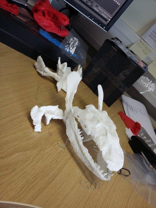 Ichthyostega 3D print taking shape!